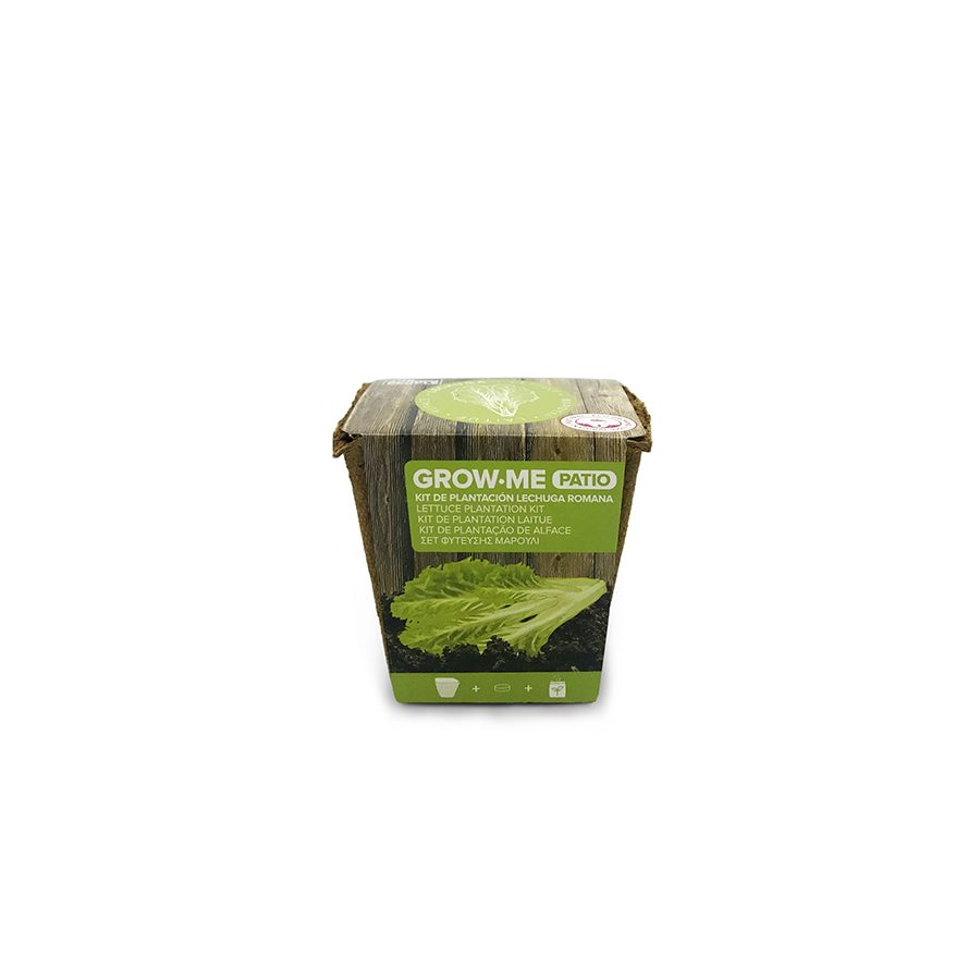 Kit de cultivo con semillas de lechuga romana – Grow me patio lechuga