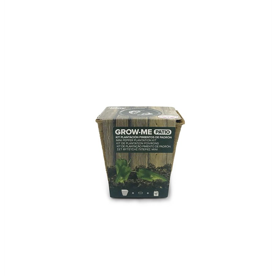 Kit de cultivo con semillas de pimientos del padrón – Grow me patio pimientos